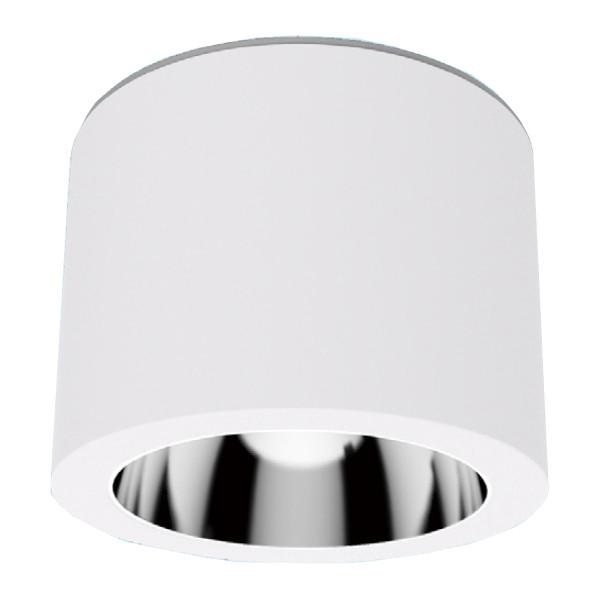LED valgusti PROLUMEN DL115B valge ring 230V 25W 2930lm CRI80 90° IP54 4000K päevavalge