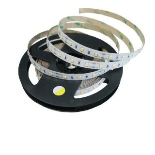 LED nauha PROLUMEN 2835 60LED 1m 12V  7,2W 830lm  120° IP20 kylmä valkoinen 6000K