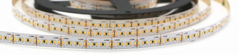 LED strip PROLUMEN 2216 300LED 1m 24V  24W 2200lm  120° IP20 pure white 4000K