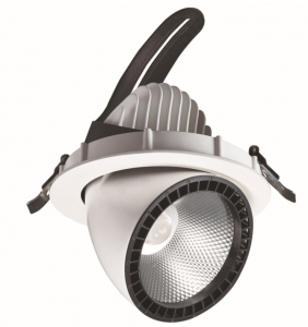 LED downlight PROLUMEN Gimbal COB white  20W 1800lm  30° IP20 warm white 3000K