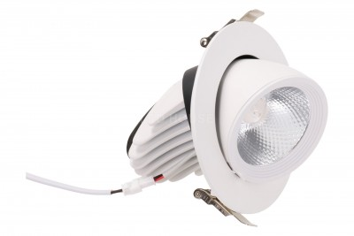 LED-alasvalo LED-alasvalo REVAL BULB Gimbal COB valkoinen  20W 1800lm CRI80  30° IP20 3000K lämmin valkoinen