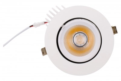 LED Allvalgusti REVAL BULB Gimbal COB valge  20W 1800lm CRI80  30° IP20 3000K soe valge