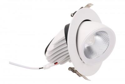 LED-alasvalo LED-alasvalo REVAL BULB Gimbal COB DIM valkoinen  5W 450lm CRI80  30° IP20 3000K lämmin valkoinen