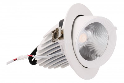 LED downlight REVAL BULB Gimbal COB white 230V 30W 2700lm CRI80 30° IP20 3000K warm white