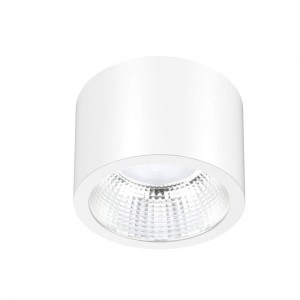 LED luminaire PROLUMEN DL115A white round 230V 25W 2330lm CRI80 60° IP54 3000K warm white